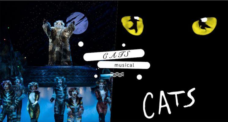2021必看全球4大音樂劇之一,百老匯最夯最經典音樂神劇《貓》來台啦! 6/16起全台17場巡演演出!