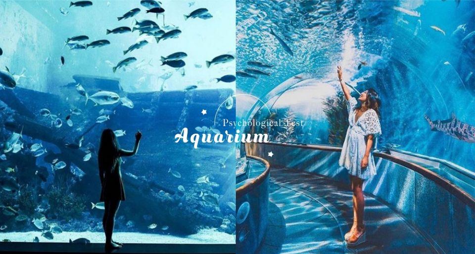 日本心理測驗!從水族館最想見的海洋生物,測出你對愛情的個性與渴望!